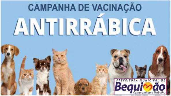 Prefeitura de Bequimão inicia Campanha Antirrábica nesta segunda-feira (22)
