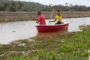 Diques da Produção: Em Bequimão famílias comemoram fartura na piscicultura